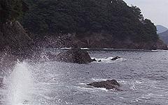 2007100702.jpg